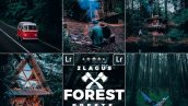 دانلود پریست لایت روم تم جنگل سبز Forest Moody Travel Presets for Mobile and Desktop Lightroom
